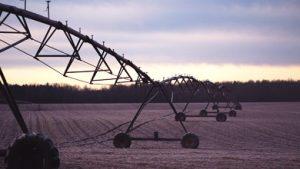 careear-agriculture-biosciences