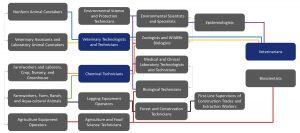 Agriculture and Biosciences Ecosystem Career Lattice