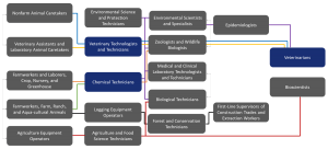 Agriculture and Biosciences Ecosystem Career Ladder