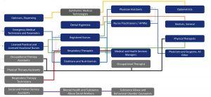 Health Care Ecosystem Career Lattice Direct Patient Care
