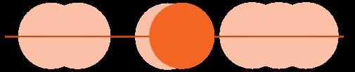 or-fig-er6