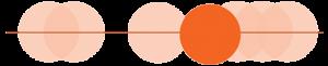 Veterinarians Occupational Profile